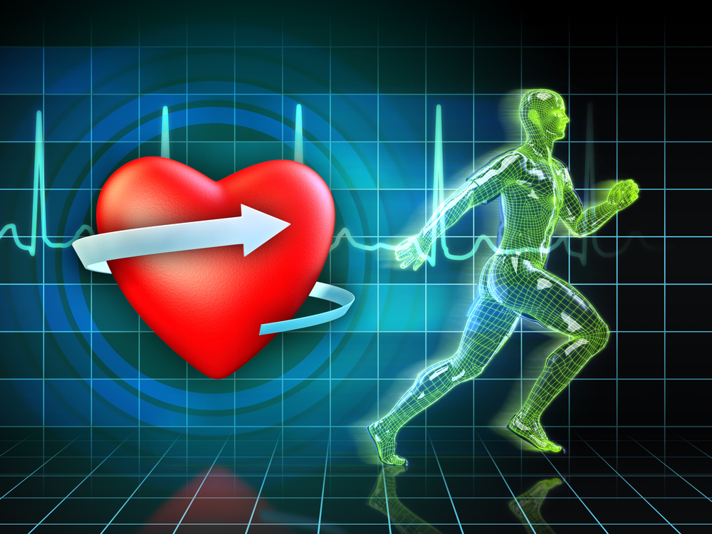 maintain a safe heart rate range