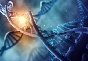 Is There Such Thing as Obesity Genes That Make You Gain Weight?