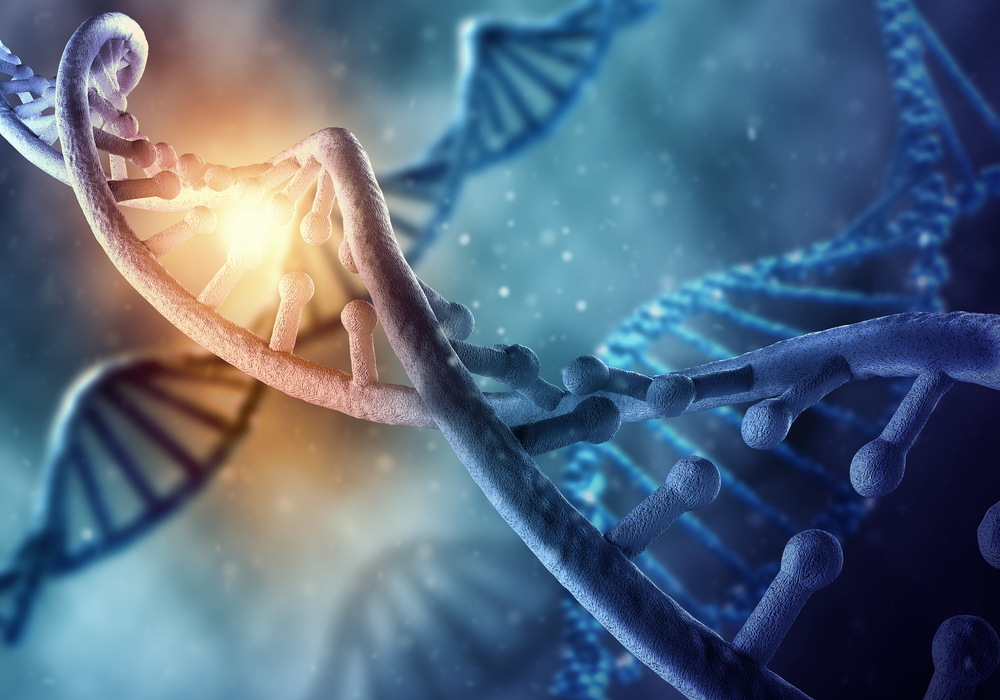 obesity genes and weight gain